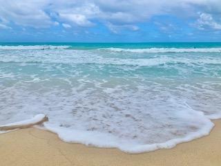 Beaches in Hawaii Waves